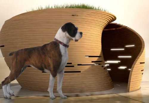 amazing-dog-house-5